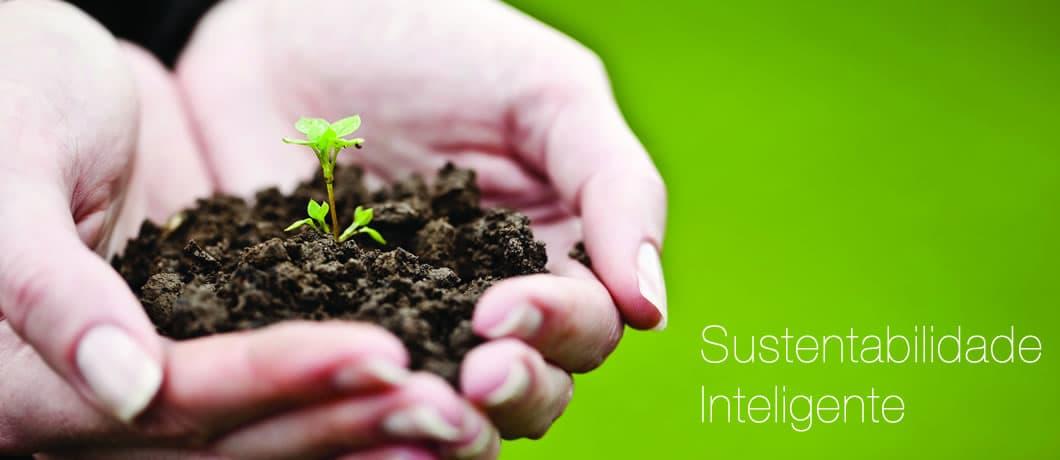 Intelligente Nachhaltigkeit